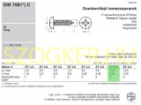 LEMEZCSAVAR DFKH D5.5*13 DIN 7981 HG. PH  LEMEZCSAVAR